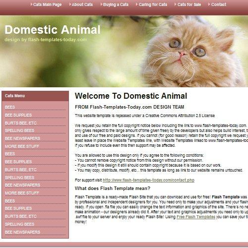 Шаблон сайта с котиком